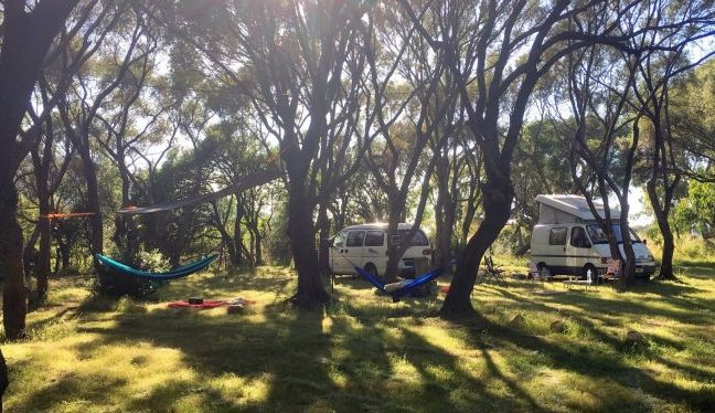 Camping à Galéria, grands emplacements ombragés