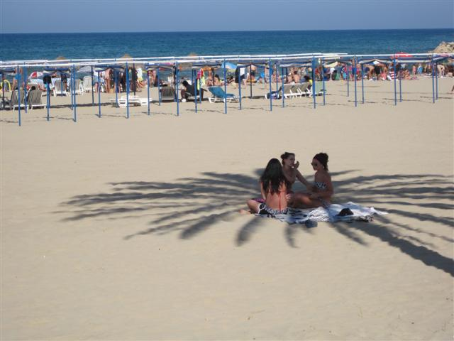 Beaches in Spain Gandia