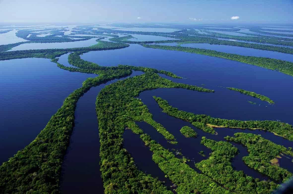 Resultado de imagem para Arquipélago das Anavilhanas