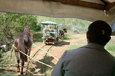 Cuzumá rails to 3 cenotes