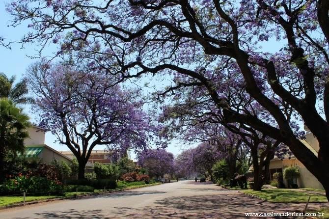 Rua próxima ao nosso hotel Holiday Inn, no Harare