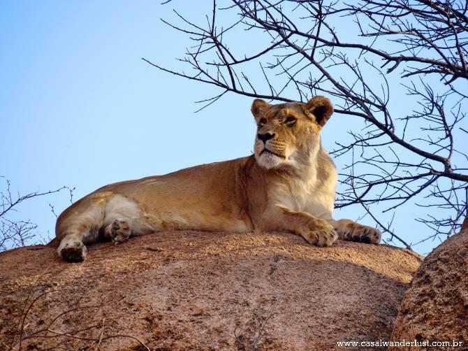 Leoa Harare