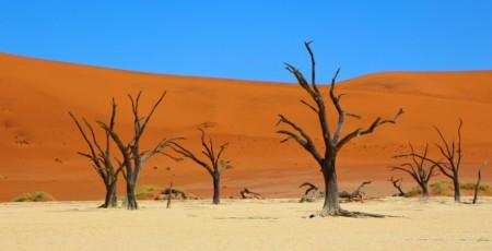 Melhores meses para visitar a Namíbia