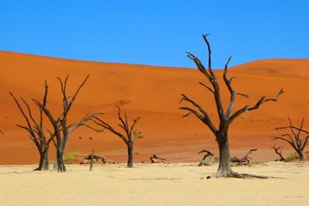 Sossusvlei e Deadvlei, cartões postais da Namíbia