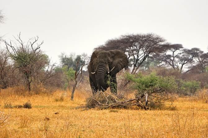 O que fazer na Namíbia