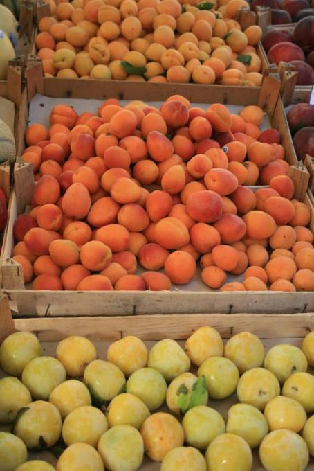 fresh plums and apricots in the market in Italy