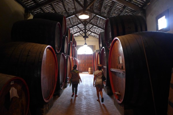 conventional winery visit