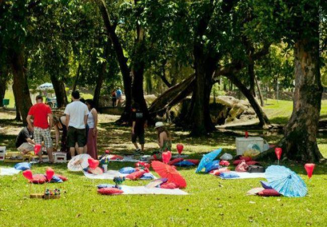 19.1_o picnic