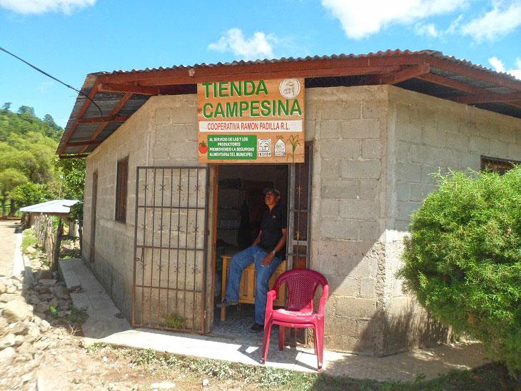 Rotulo Tienda