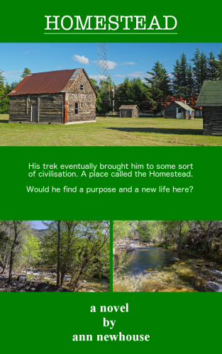 Homestead-by-ann-newhouse-free-book