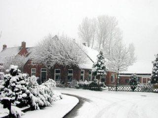 Un jardín completamente nevado