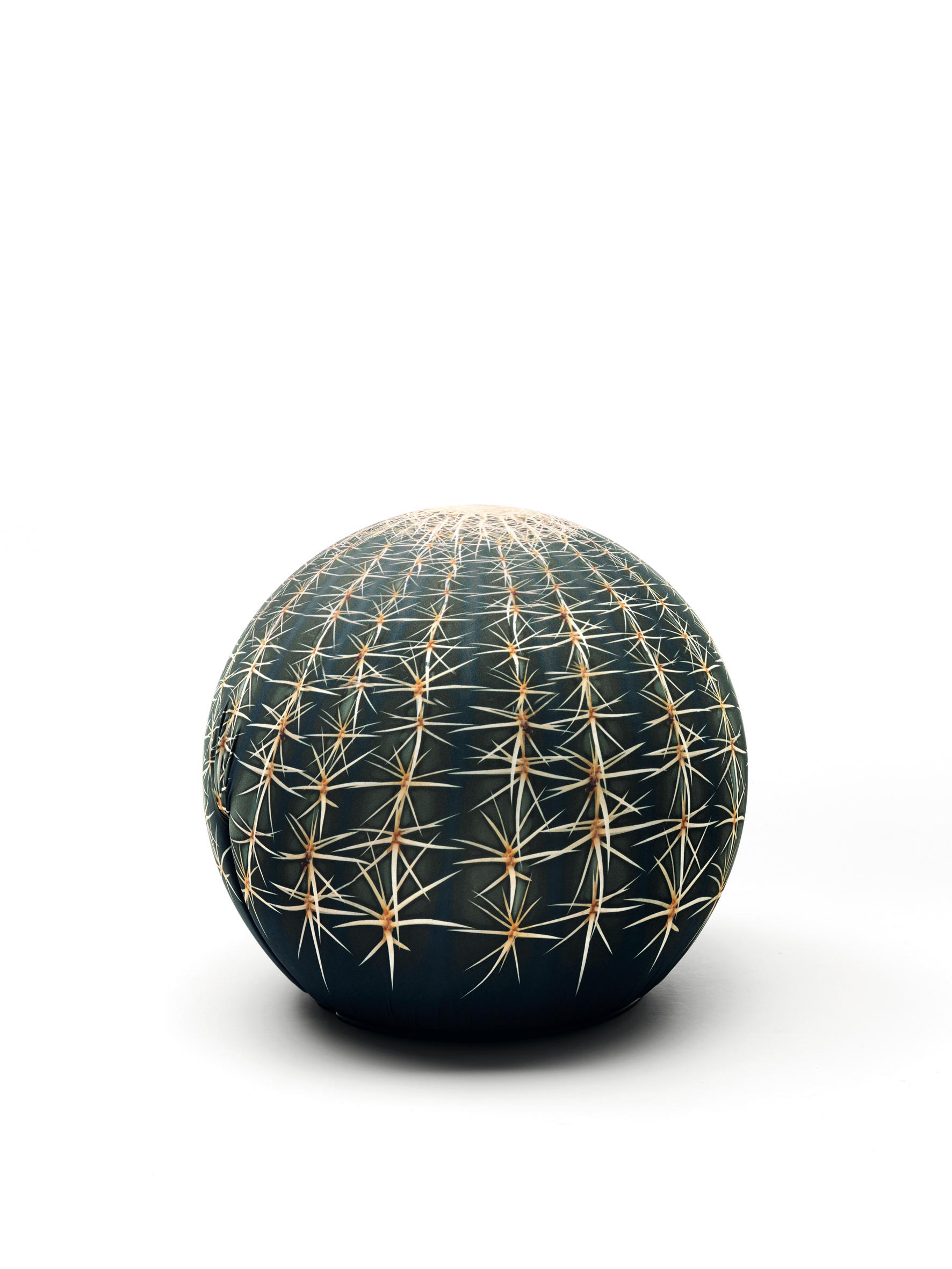 CERRUTI BALERI  2011 fuorisalone preview venus  cactus