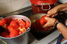 Friendo el tomate