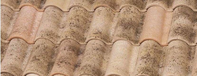 casas de madera con teja cerámica