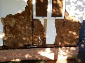 reparación de casa prefabricada, fachada estropeada