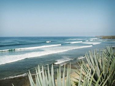 casa-selvatica-surf-7