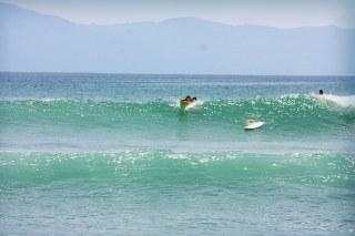 casa-selvatica-surfing-2