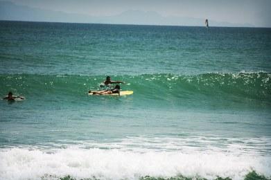 casa-selvatica-surfing84