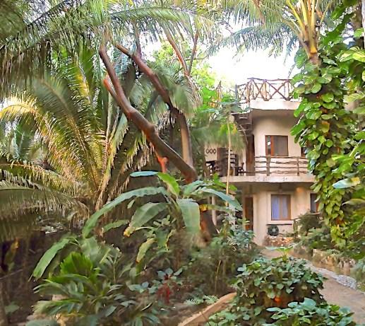 Casa-Selvatica-Punta-Mita-9