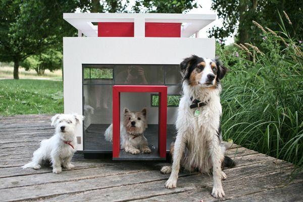 dog-houses-2
