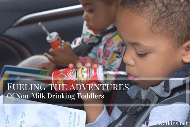 Fuel the Adventures of Non-Milk Drinkers with Dannon Danimals Smoothies!