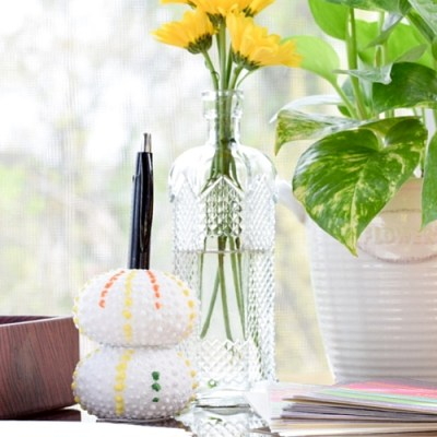 DIY Sea Urchin Pen Holder from Vase Filler