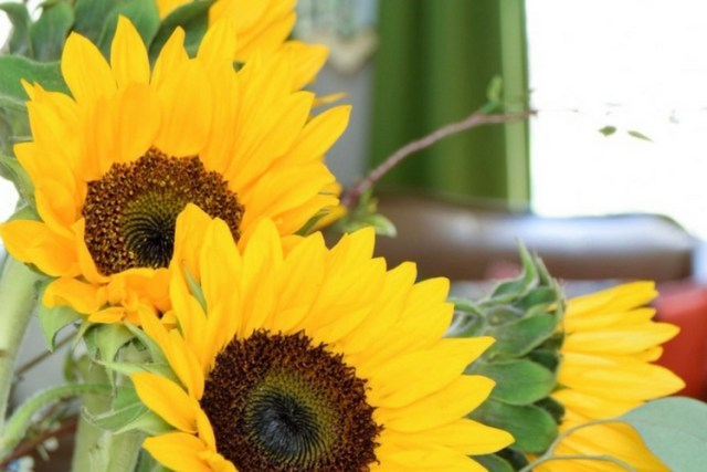 sunflower-fall-centerpiece-display