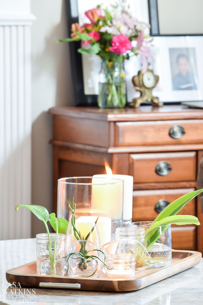 how to decorate with air plants. Using glass votives for air plant holders