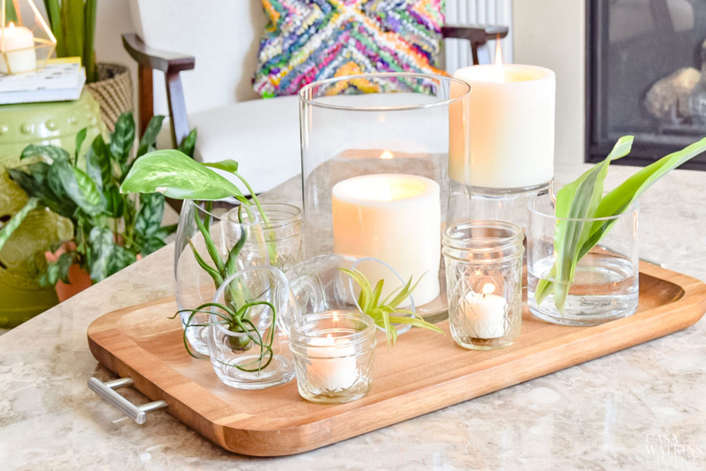 Using Air Plants For Coffee Table Tray Decor