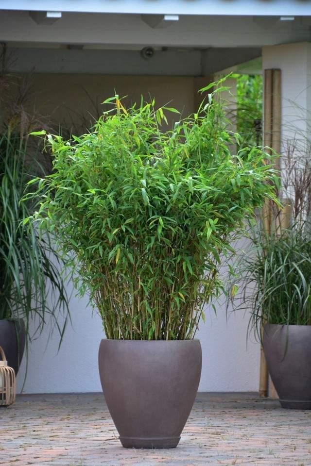 Bamb ideas para decorar tu casa al estilo japones