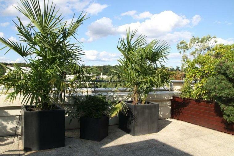 Terraza  50 ideas increbles para decorarla con plantas