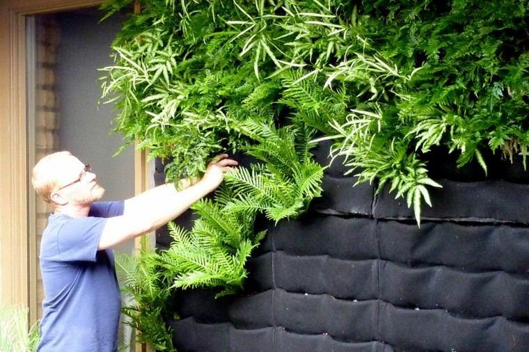 Diseo jardines verticales y naturaleza un espacio de vida