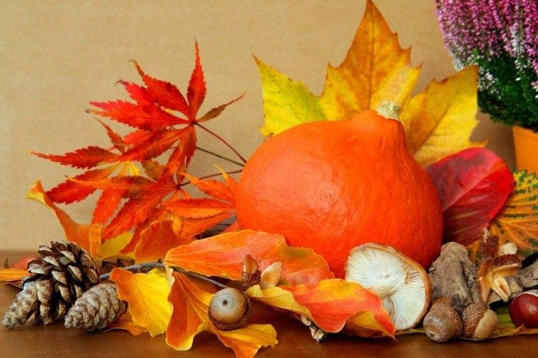 Pumpkin Fall Wallpaper Hojas De Arboles Secas Para Adornos De Oto 241 O 50 Ideas