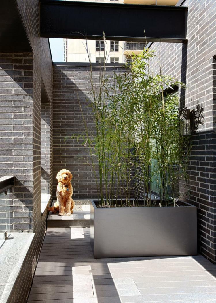Plantas diseo y decorado en la ubicacin de balcones