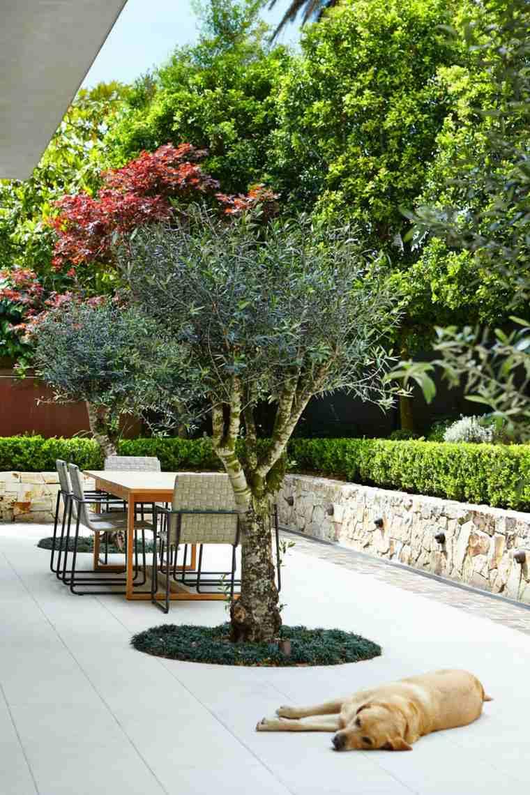 Jardines De Diseo Moderno Jardines Pequeos Patios Diseo