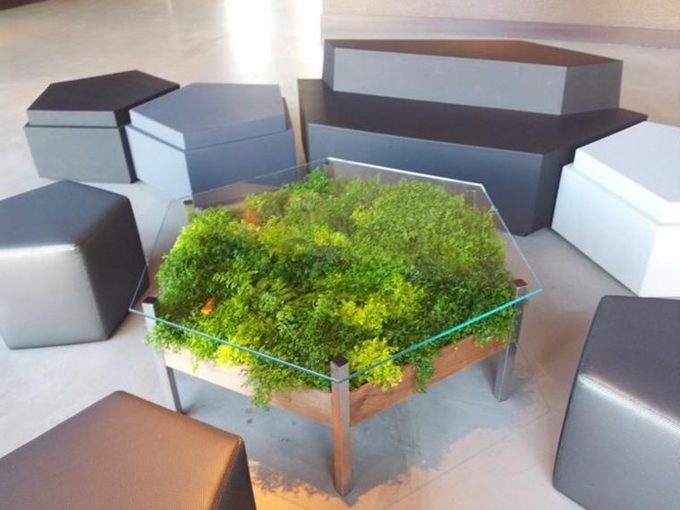 Diseos de muebles de sala o jardn con plantas