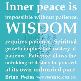INNER-PEACE-QUOTES-WISDOM-REQUIRES-PATIENCE-QUOTES