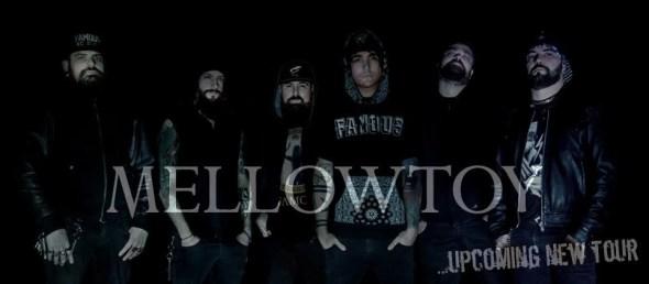 Mellowtoy NewLineUp