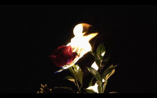 Screen Shot 2017-01-02 at 1.48.54 PM