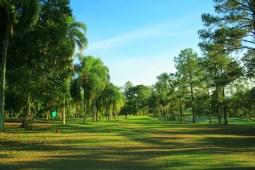 Golfe  12