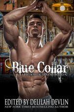 BlueCollar 600