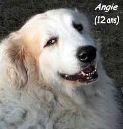 Angie-12-ans-2