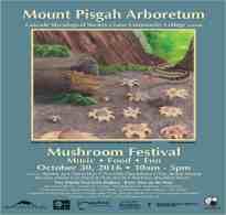 2016 Mushroom Festival Poster