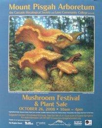 festival-poster-2008