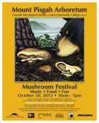 MF 2012 Poster Yellow Charcoal