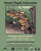 festival-poster-2013