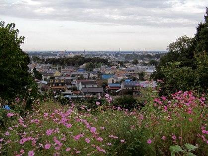 A view of Tokorozawa City from the hillside. Miyazaki lives in Tokorozawa.
