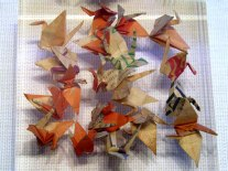 Smalled cranes folded by Sadako Sasaki in her hospital room. These weren't much larger than the common housefly.