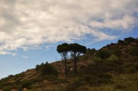 Contrast - Spania