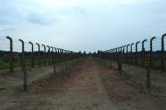 Spre nicaieri - Auschwitz